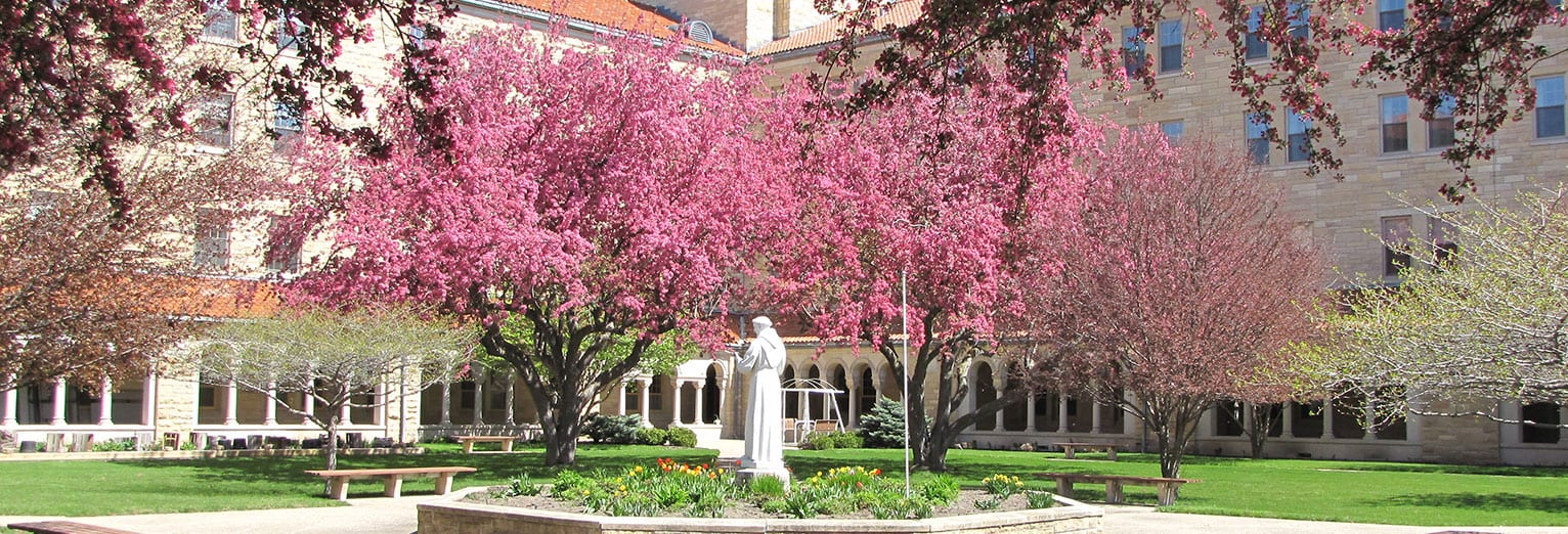 Francis of Assisi statue
